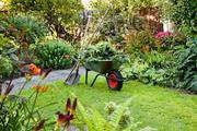 Gardening Contractor in Chelmsford