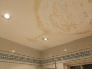 Painting and Decorating Services in Chelmsford